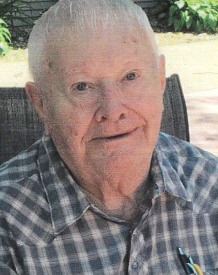 Leisinger, Donald William Obituary Photo