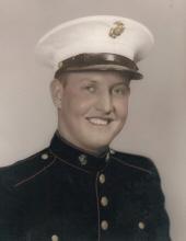 Leisinger, Lester Ernest Obituary Photo